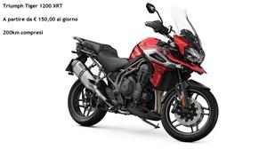 Noleggio Moto Triumph