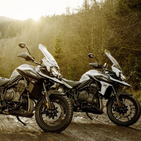 Tiger 1200 Special Edition Alpine & Desert